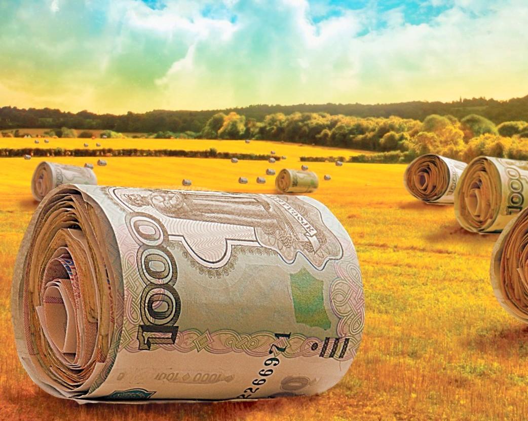 сих Дотации сельскому хозяйству в европе скорее добровольно
