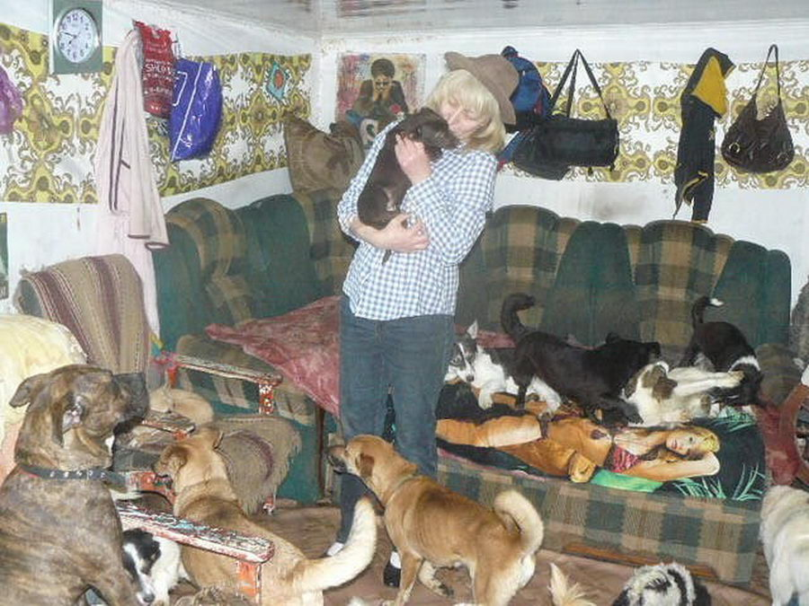 условия проживания животных в домашних условиях