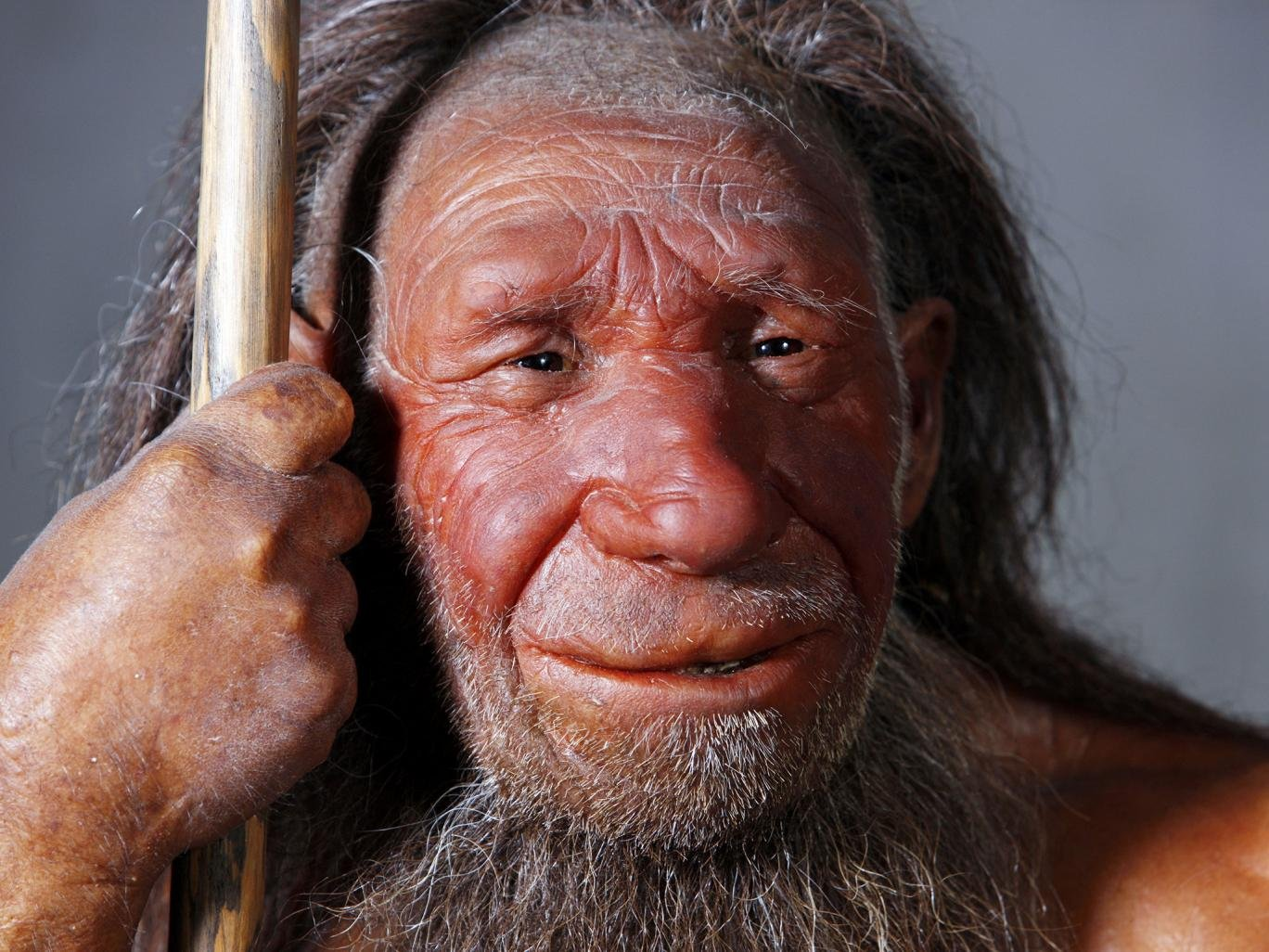 neanderthal and early modern humans Below, we summarize the current isotopic evidence for neanderthal and modern human diets and suggest that the previously unrecorded data support our original inference that there was a shift in dietary spectra between the neanderthals and early modern humans in europe.