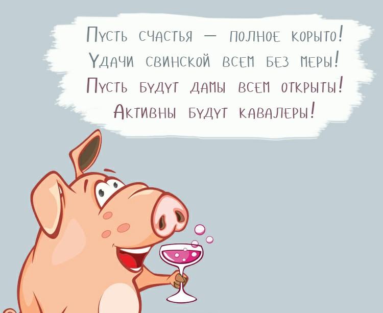 Картинки с пожеланиями к новому году 2019 свиньи прикольные, картинки днем